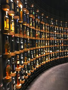 Cité du Vin has a wine store where you can buy wine from all around the world. Did you know Tajikistan produced wine?