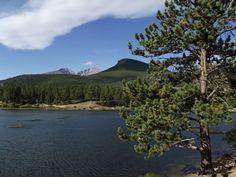 lily lake - Rocky Mountain National Park