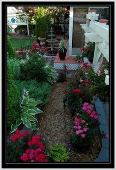 . Shade Garden, Shades, Plants, Sunnies, Plant, Eye Shadows, Draping, Planets