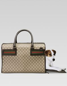 Putting On The Dog With The 10 Hautiest Designer Pet Carriers  ... see more at InventorSpot.com