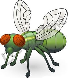 Lesson Zone US | Habitats Habitats, Fruit Flies, Clip Art, Pictures