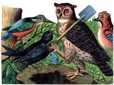 Vintage-Halloween-Owl-Image-GraphicsFairy.jpg (JPEG Image, 1698×1263 pixels) - Scaled (41%)