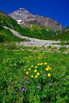 Balmhorn im Gasterntal. Kandersteg. Berner Oberland.