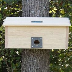 My backyard bird friends love this winter roosting box!  Plenty of room for a whole family of birds!