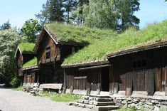 Norsk Folkemuseum: Grass roofed barns, Oslo