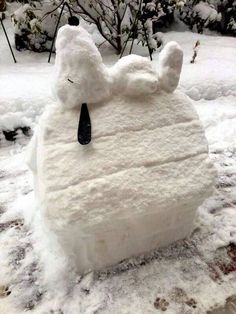 Winter fun snoopy