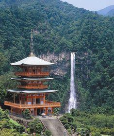 Garden Tattoos, Wakayama, Japan Tattoo, Japanese Art, Japanese Gardens, Kyoto Japan, Tea Houses, Bamboo Architecture, Japan Travel
