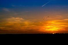 Sunset @ Palendijk - Sunset @ Palendijk