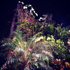 Philadelphia flower show