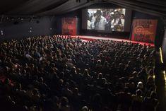 #cinema #tiradentes #mostradecinema #minasgerais Concert, Straitjacket, Career, Events, Recital, Concerts, Festivals