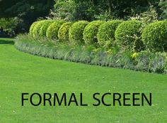 A formal hedge presents itself as a single unit with a smooth, sheared top and sides.  It can be clipped so that it's boxy, rounded or pointy topped.  The best plants for formal hedging are rugged small-leafed types such as boxwood, hemlock or arborvitae. A screen of evergreen trees can also effectively block a view; White spruce makes an excellent screen, as does eastern hemlock. The downside of using evergreen trees for screening is that they grow slowly in the near term, then in later…