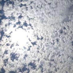 Abrir a mente para novas ideias é apenas uma questão de escolha: ou ficas no ninho ou aprendes a voar  #inspiração #céu #nofilter #saidazonadeconforto #arrisca #livelife #greathingsnevercamefromcomfortzones #inspiration #semfiltro #sky #saturday #sabado #mixofcolorsandpatterns #livelifelaugh #verao #summer #june #junho #clouds #nuvens #blue #white
