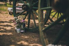 Decoração - Decoration Casamento Bel e Ju Dandelion, Flowers, Plants, Valentines Day Weddings, Dandelions, Plant, Taraxacum Officinale, Royal Icing Flowers, Flower