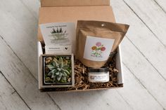Eco-friendly, natural gift boxes for various occasions. Every box includes a succulent or air plant and up to two personal gifts. Show appreciation by sending one of our thank you boxes! Homemade Candles, Diy Candles, Wine Gift Baskets, Basket Gift, Thank You Gifts, Gifts For Mom, Herb Garden Kit, Christmas Plants, Succulent Gifts