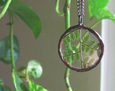 fern necklace // pressed green fern. soldered glass circle.