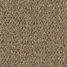 Tuition 26 Sienna - Save 30-60% - Call 866-929-0653 for the Best Prices! Aladdin by Mohawk Commercial Carpet