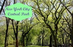 New York's central park - a guide