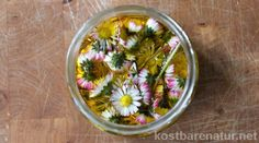Gänseblümchenöl selber machen – hilft bei kleinen Wunden, Quetschungen, Schwangerschaftsstreifen und mehr Make use of the numerous active ingredients of the daisy in a homemade care oil! Beauty Make Up, Diy Beauty, Seafood Market, Diy Body Scrub, Diy Spa, Stretch Marks, Health And Wellbeing, Active Ingredient, Natural World