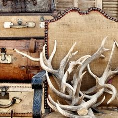 Love the antlers and burlap. jayson-home-garden-fall-flea-market- Freitas Bell laura your crazy antlers. Vintage Suitcases, Flea Market Finds, Flea Markets, Autumn Activities, Cabins In The Woods, Fleas, Antlers, Rustic Decor, Rustic Style