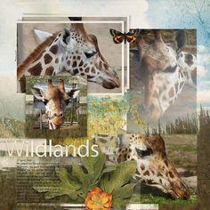 My Favorite & My Best {Story} 10 by Jen Maddocks Designs https://www.digitalscrapbookingstudio.com/personal-use/templates/my-favorite-and-my-best-story-10/ ARTAND Nature {The Bundle} by Jen Maddocks Designs https://www.digitalscrapbookingstudio.com/personal-use/bundled-deals/artand-nature-the-bundle/