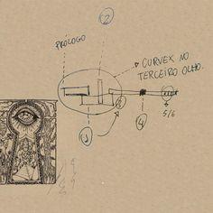 Planta: Curvex no terceiro olho #book #livro #brazil #barulhista