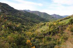 Asturtsalia: Montegrande: el fayéu del Privilexu