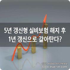 5년 갱신형 실비보험 해지 후 1년 갱신으로 갈아탄다? :: 보험의 새로운 패러다임! www.true-in.com Company Logo, Logos, Logo
