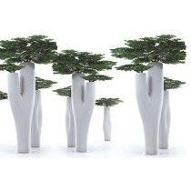 Missed Tree #plantenbak van #Serralunga