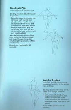 Noodle Muscle Exercise Wall Chart Aquafit Instructor