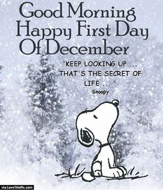 Good Morning Happy First Day Of December good morning december december quotes hello december happy december hello december quotes goodbye november december quote goodbye november hello december good morning december quotes