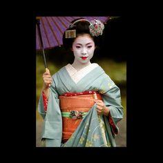 Maiko Hinagiku, 2015 芸妓 雛菊さん : カルナのつぶやき