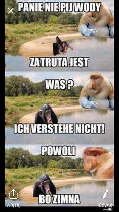 Polish Memes, Funny Sms, Anime Naruto, Jokes, Lol, Animals, Black, Humor, German