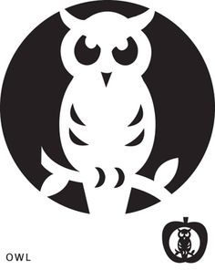 Tattoos on pinterest henna henna designs and henna tattoos for Simple owl pumpkin pattern