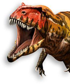 Royal Ontario Museum - Museo Real de Ontario - Toronto, Ontario, Canada - Ultimate Dinosaurs Exhibition
