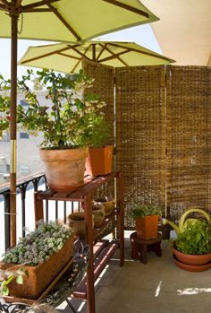 Apartment patio garden ideas tip 5 balcony garden design tips 4 mini Outdoor Rooms, Outdoor Living, Patio Privacy Screen, Privacy Screens, Outdoor Privacy, Folding Screens, Privacy Landscaping, Los Angeles Apartments, Porch And Balcony