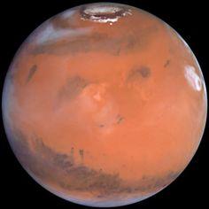 #Mars' Volcanic #Elysium Region