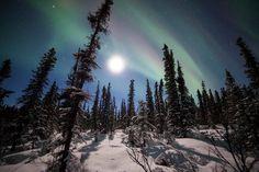 DenaliNPS #NorthernLights #Alaska