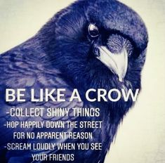 Words Quotes, Wise Words, Life Quotes, Sayings, Qoutes, Crow Spirit Animal, Best Quotes, Funny Quotes, Animal Totems