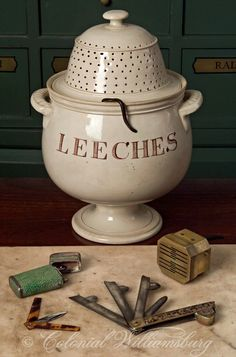 Leech crawling on the lid of the leech jar at the Apothecary Shop. Devices used for the medical practice of bleeding are in the foreground. 18th Century scene at historic Colonial Williamsburg, Williamsburg, Virginia. Photo by David M. Doody.