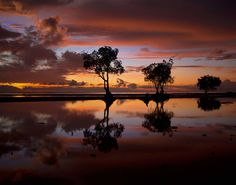 First Light by Andrew Madden on 500px