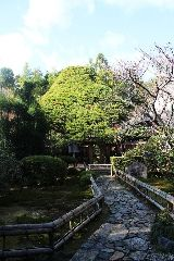 Japanese Gardens, Elements Of Design, Tea Ceremony, Paths, Explore, Style, Swag, Japan Garden, Outfits