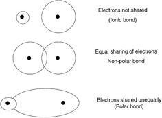 Need to remember the difference between ionic bonds, non polar and polar bonds. My goal: To be able to define all 3 by - put on my bedroom wall to help! Chemistry Help, Chemistry Worksheets, High School Chemistry, Teaching Chemistry, Science Chemistry, Physical Science, Science Experiments, Anatomy Flashcards, Ap Biology