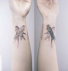 Fine line black and white swallows. Artista Tatuador: Sol Tattoo