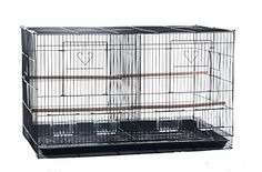 Finch Parakeet Canary Cockatiel Breeder Utility Metal Bird Cage with Divider and Nest Door 30 By 18 By 18 Inch H ** Continue to the product at the image link.Note:It is affiliate link to Amazon.