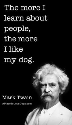 The More I Like My Dog | Quote