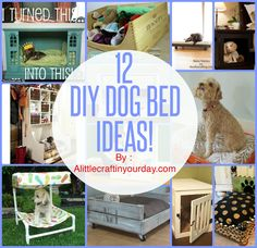 12 DIY Dog Beds | A Little Craft In Your DayA Little Craft In Your Day