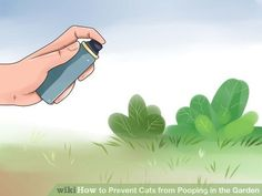 Image titled Prevent Cats from Pooping in the Garden Step 5