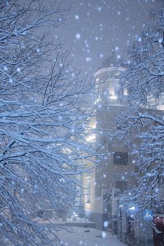 Snowy winter night