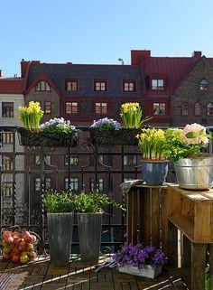 Modern Balcony garden: #terrace #balcony # garden outdoor ...