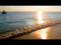 "Don Henley - ""Boys of Summer"" -- will always be TIMELESS for me..."